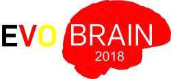 Logo_EvoBrain2018_nodate